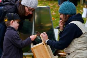 Image via forest-festival.com